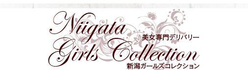 新潟ガールズコレクション 店舗画像