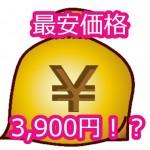 3,900円